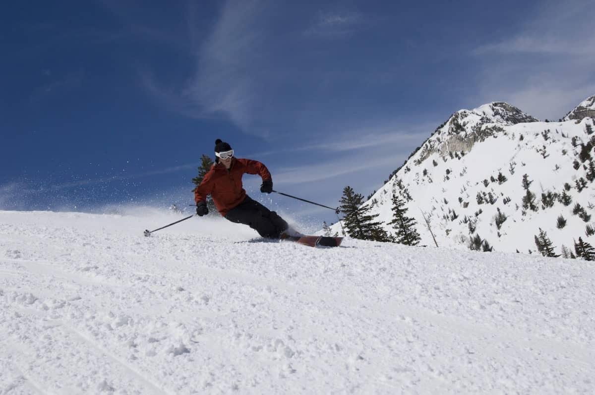 parallel ski techniques