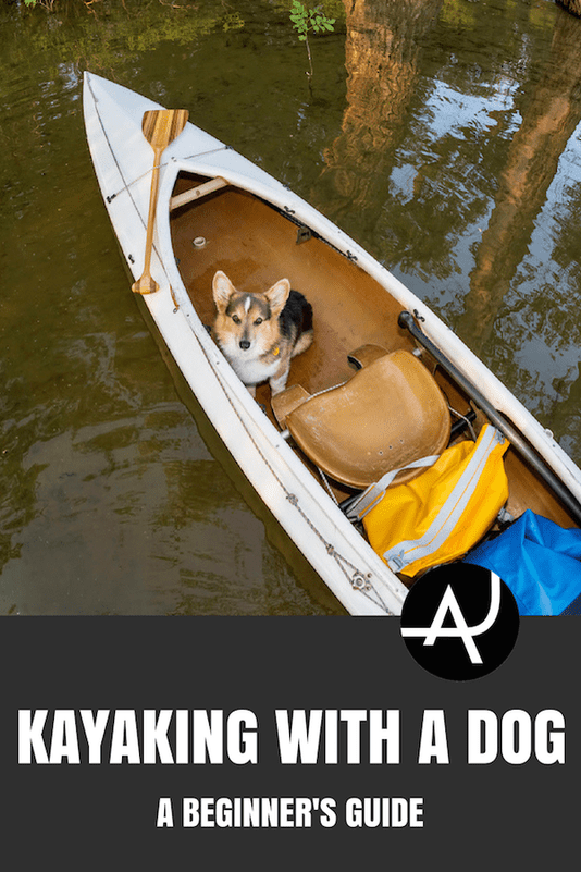 Kayaking With A Dog: A Practical Guide – Kayaking Tips for Beginners – Best Kayaking Gear and Accessories - Kayaking Ideas – Articles and Posts About Kayaking