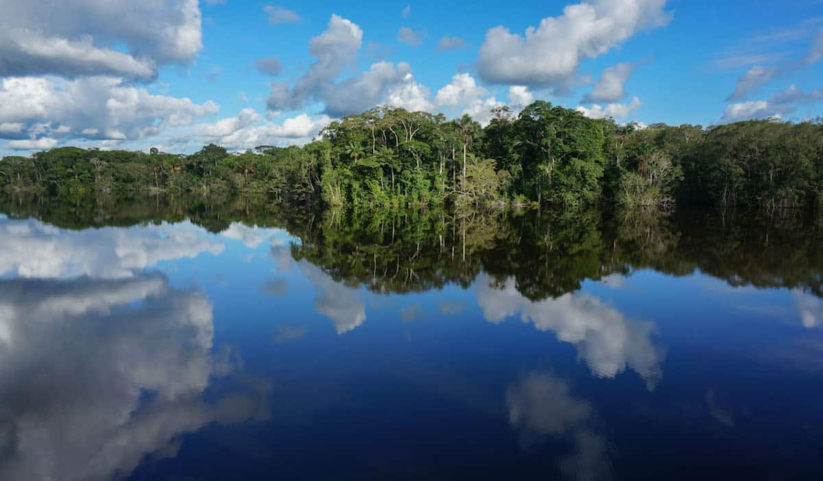 30 Post Cards From The Amazon That Will Inspire You To Head To The Jungle