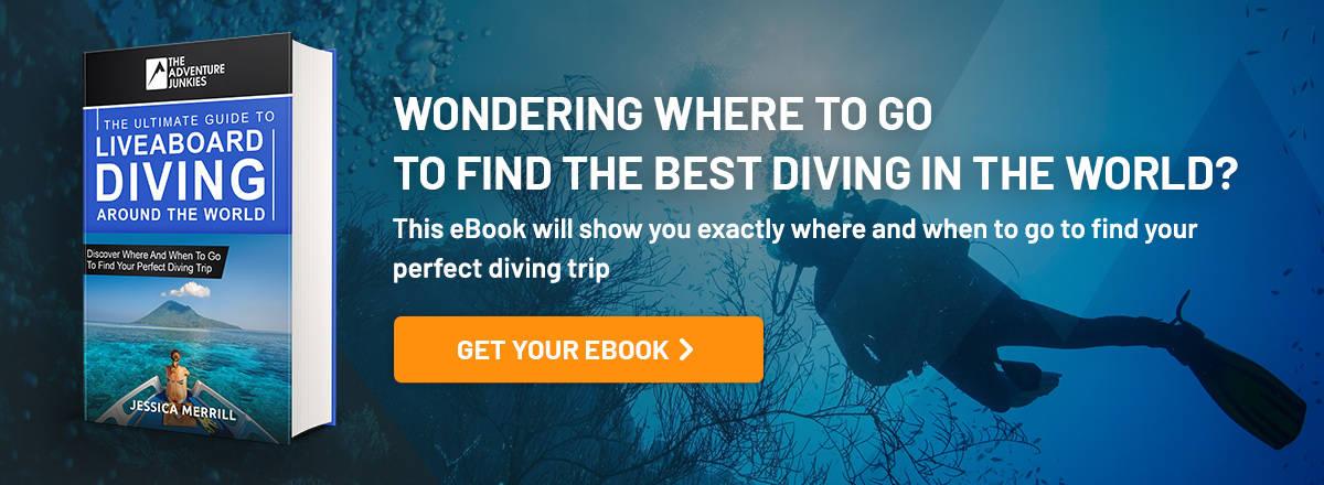 Liveaboard eBook