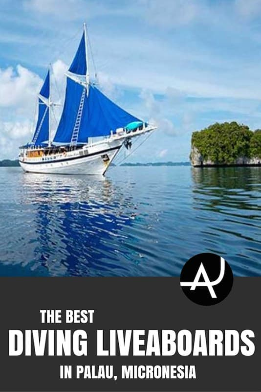 Best Palau Diving Liveaboard Trips - Best Scuba Diving Destinations - Diving Bucket List - Adventure Vacations - Beautiful Locations and Places to Dive