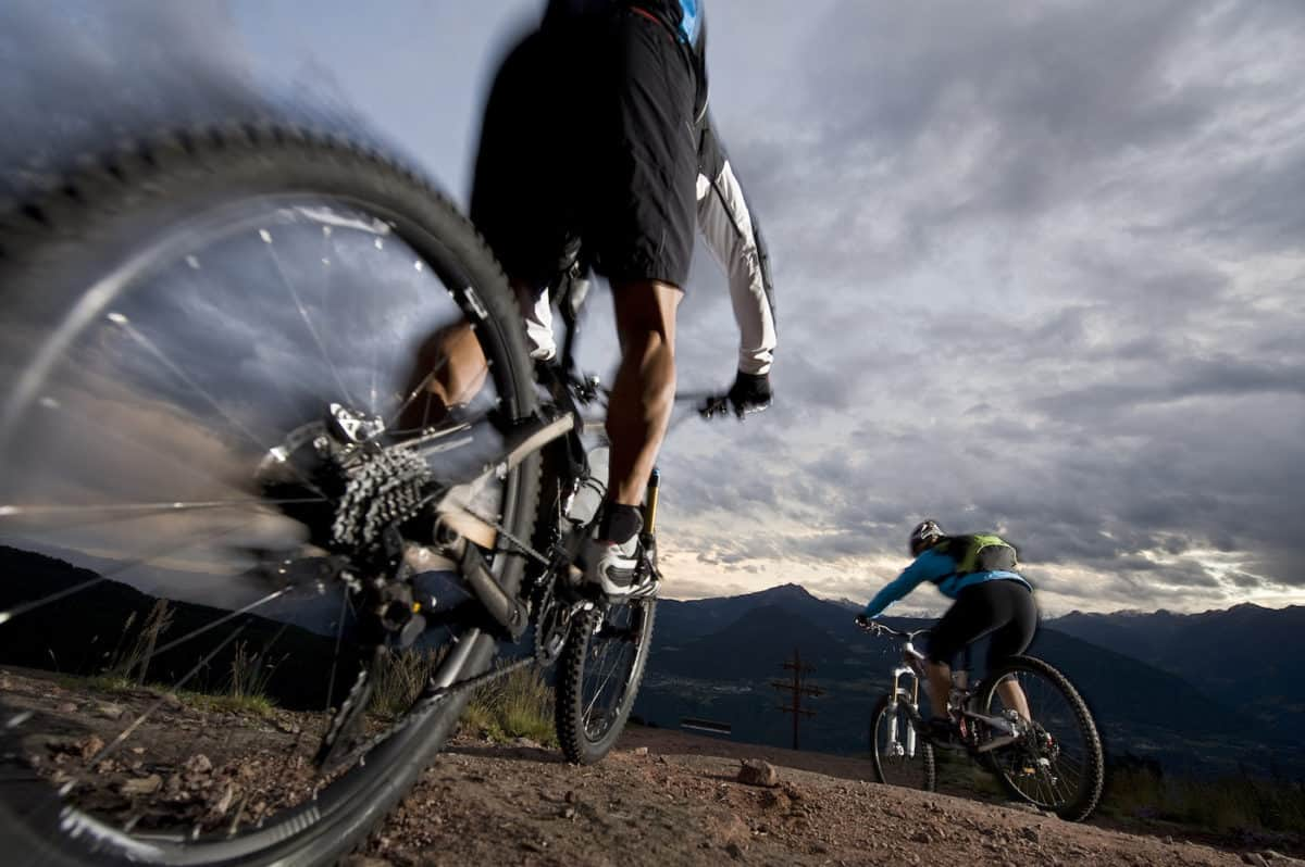 parts of a mountain bike