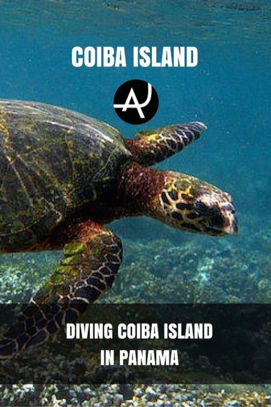 Scuba Diving In Coiba Island Panama The Adventure Junkies
