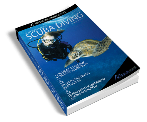 quick starter guide to scuba diving