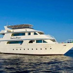 best liveaboard in red sea