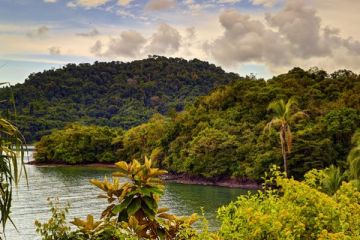 6 Reasons Why Coiba Is the Most Up-and-Coming travel destination in Central America